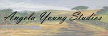 Logo for Angela Young Studios